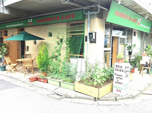 京葉流通センターはこんなところ。写真は晴れる家cafeさんです。