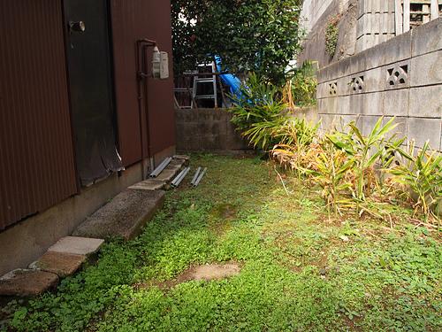 お庭は小振りだけど、ちょうどいいサイズ。