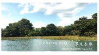 THINKING REEDS